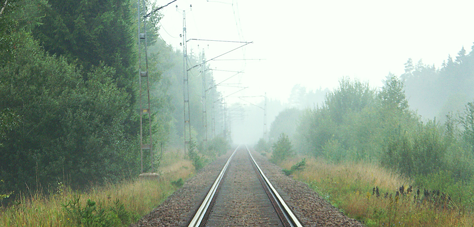 En tågräls leder genom en skog mot horisonten.