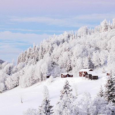 Minskat festande för anställda på skidort