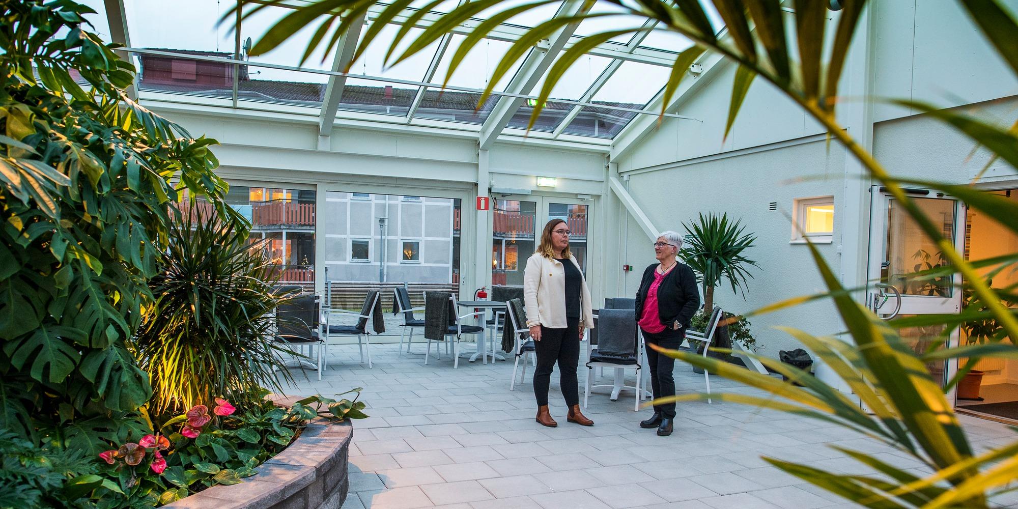 Vinterträdgård Emmaboda allaktivitetshus Loket