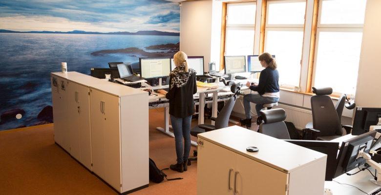 Kontorsarbetsplats, två personer arbetar i ett kontorslandskap, med ryggen mot kameran.