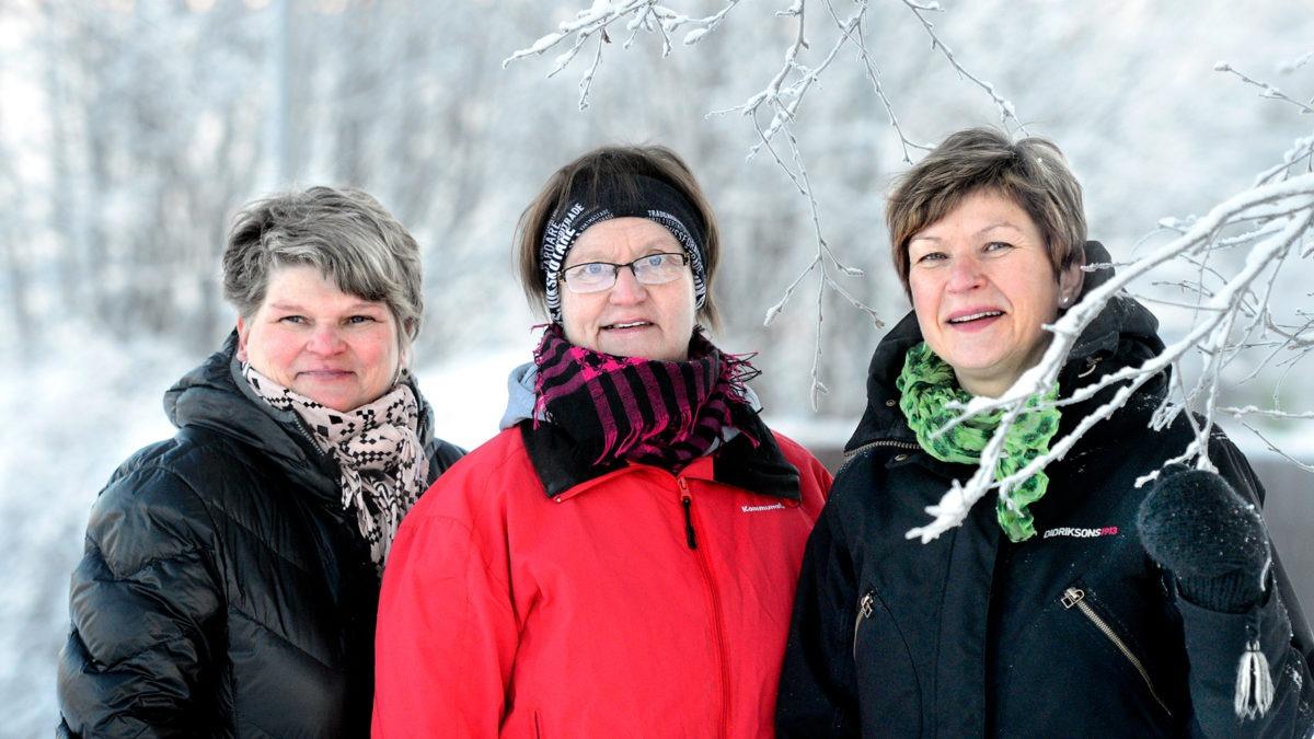 Tre kvinnor i vintrigt landskap, tema Vård i annans hem.